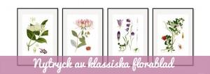 Florablad