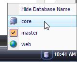 Sitecore Database
