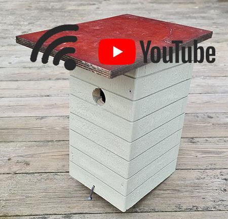 YouTubeHolk